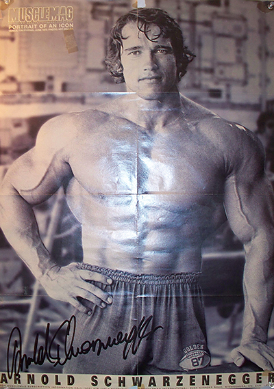 Arnold Schwarzenegger's Workout Wasn't For Wimps - Is Yours?