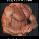 Nutrition for Lifting Weights - Daily Calorie Intake